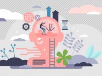 Мозг – главный пункт управления жизнедеятельностью человека